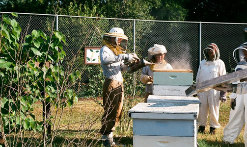 Khann with beekeepers